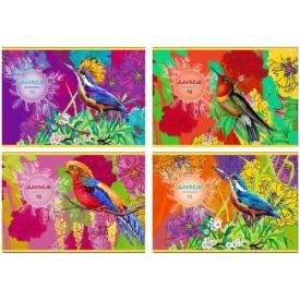 """Альбом для рисования 16л., А4, на скрепке BG """"Paradise bird"""""""